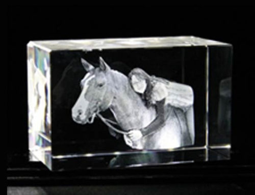 Photo in glass cubes – 3D-Model-lasering