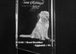 3D Laser Hundeverein Pokal Wanderpreis Trophäe